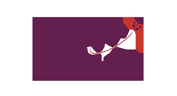 apst-association-professionnelle